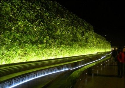 Westfield Living Wall at night - one of the longest living walls in the UK.  #AthenaeumUrbanGardenCompetition