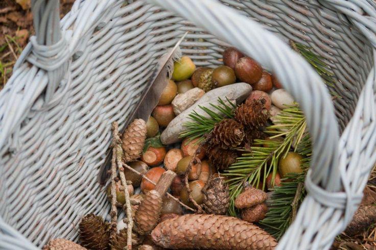 Sint Michäelsfeest | Oogstfeest #herfstschatten