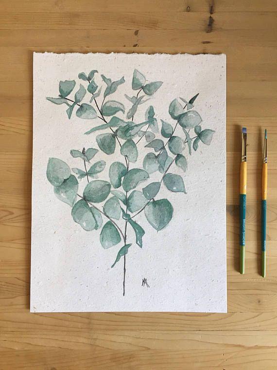 Illustration eucalyptus  Aquarelle  Fait à la main