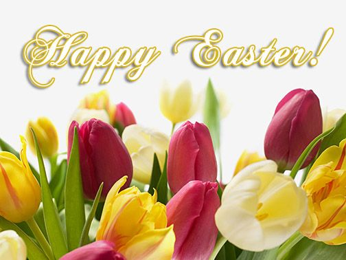 We'd like to wish everyone a fantastic long weekend and a Happy Easter - Filled with bright feelings and joy, with family and friends.