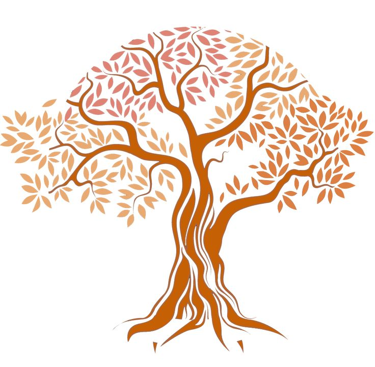 Un articol de Maya Putini oameni stiu ca otetul de mere este benefic pentru piele. Acesta contine ingrediente care sprijina sanatatea pielii si care, spre deosebire de alte produse similare din comert, sunt si mult mai ieftine! Avand in vedere aceste lucruri, poate ca ar trebui sa incerci si tu sa inlocuiesti gelurile de curatare …