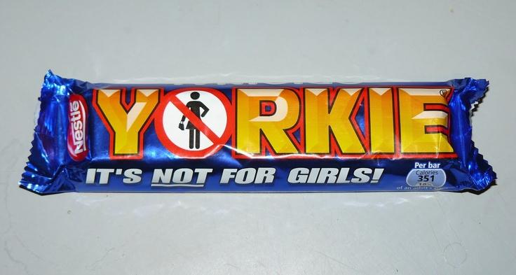 yorkie bar