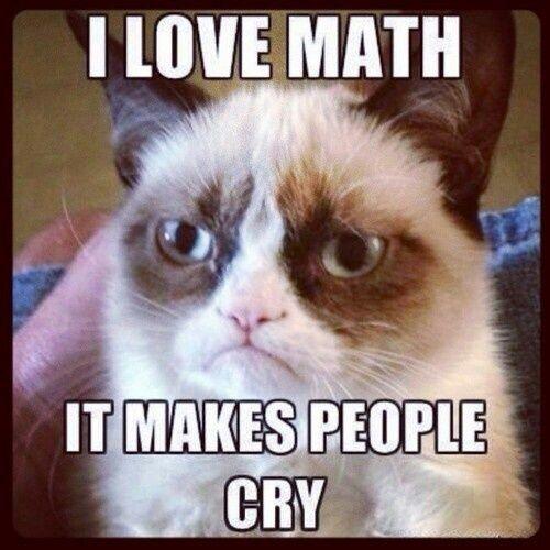 I hate math but I love grumpy cat. | i like to laugh ...
