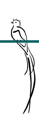 Quetzal Mayan Symbol 17 Best ideas about Qu...