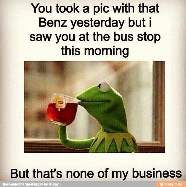 1000 Images About Mega Muppet Board On Pinterest: 1000+ Images About Kermit ! My New Favorite On Pinterest