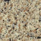 KraftMaid 4 in. x 4 in. Natural Quartz Vanity Top Sample in Sand Staccato