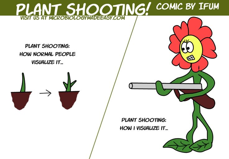 plant shooting Botany Jokes/ Humor Pinterest Funny
