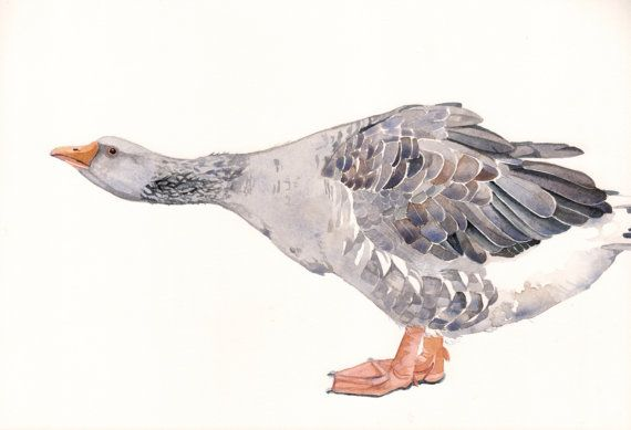Gander Painting  Goose Print of watercolor by Splodgepodge on Etsy, $15.00