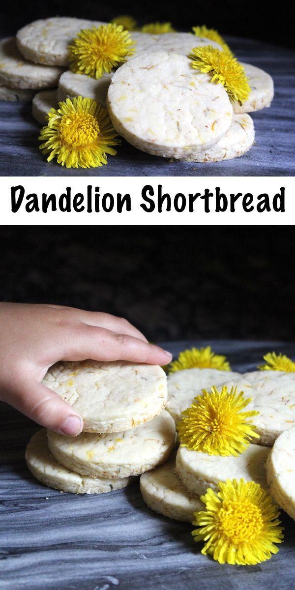Dandelion Shortbread Cookies Recipe Foraging Recipes Dandelion Recipes Foraged Food