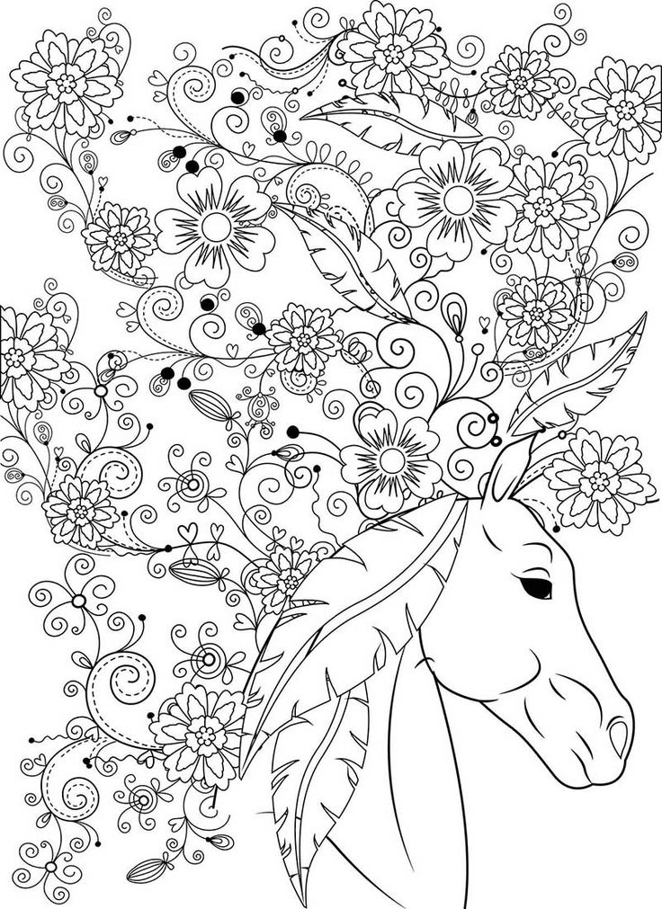 Beautiful Horse Adult Coloring Book Stress Relief Designs