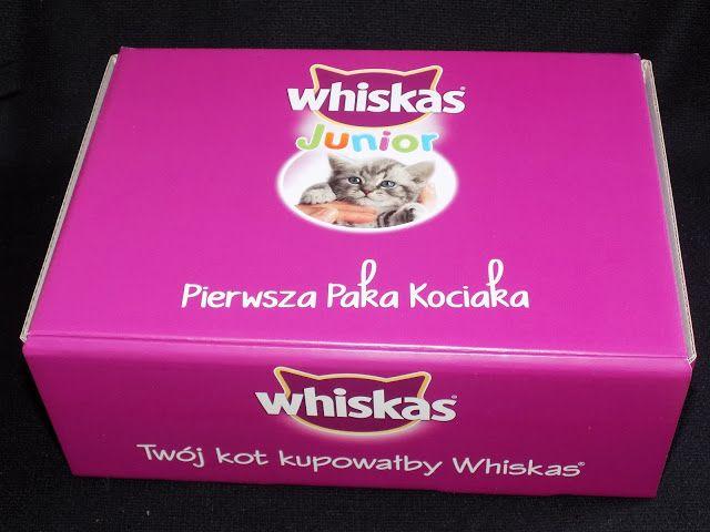 Kasia testuje i opisuje: Pierwsza paka dla kociaka-Whiskas