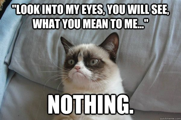look into my eyes you will see what you mean to me no - GrumpyCat