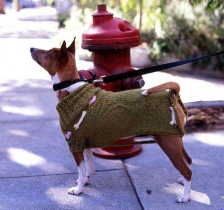Mejores 61 imágenes de Chalecos para perritos en Pinterest ...