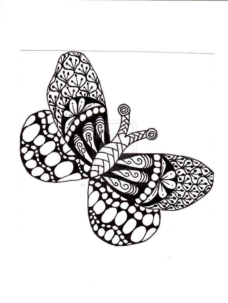 zentangle easy zentangles butterfly drawings patterns animals deviantart drawing coloring doodle adult tangle dragonfly doodles colouring poses