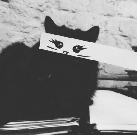 Lachen met zwarte katten - Leuke actieve dingen doen - unieke sportieve, gezonde, avontuurlijke, buiten, vakantie en fiets tips.