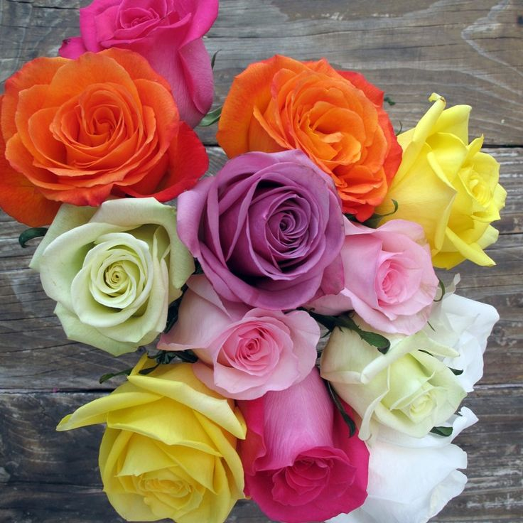 love multi colored roses i can make mini arrangements for