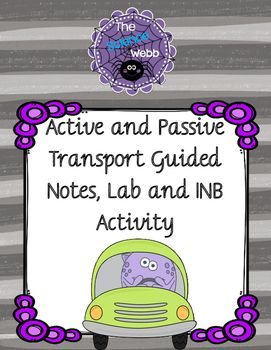 Active and Passive Transport Guided Notes, Lab, and INB Activity
