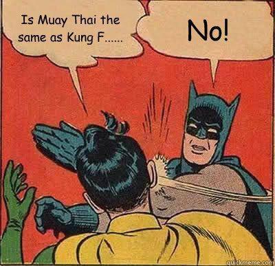 Muay Thai www.Facebook.com/McDojoLife