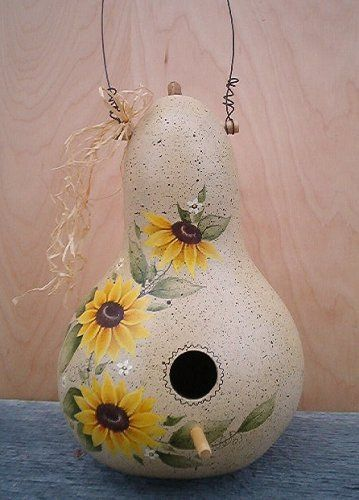 free images to paint on gourds | Hand Painted Gourd Birdhouses - Birds House