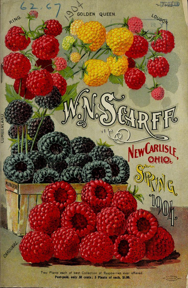 Spring 1904