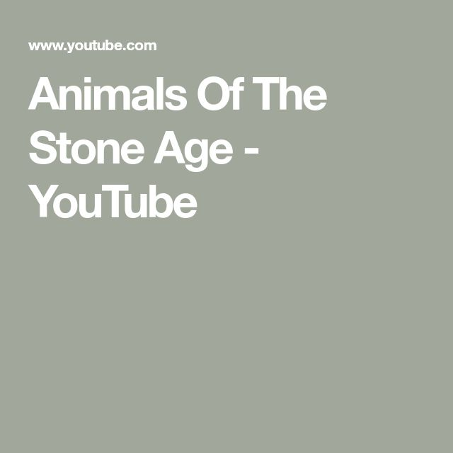 Animals Of The Stone Age - YouTube