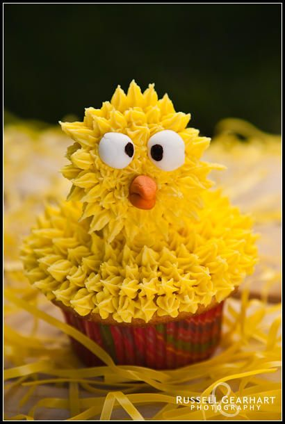 Ingrid's Adventures in Baking and Cake Decorating: Crazy Chicken Cupcakes! This chick has posed for one  too many pictures and is ready to call it a day!