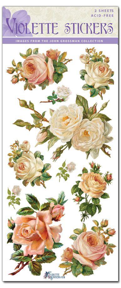 C05-White Roses