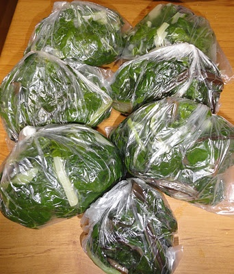 How to freeze excess silverbeet