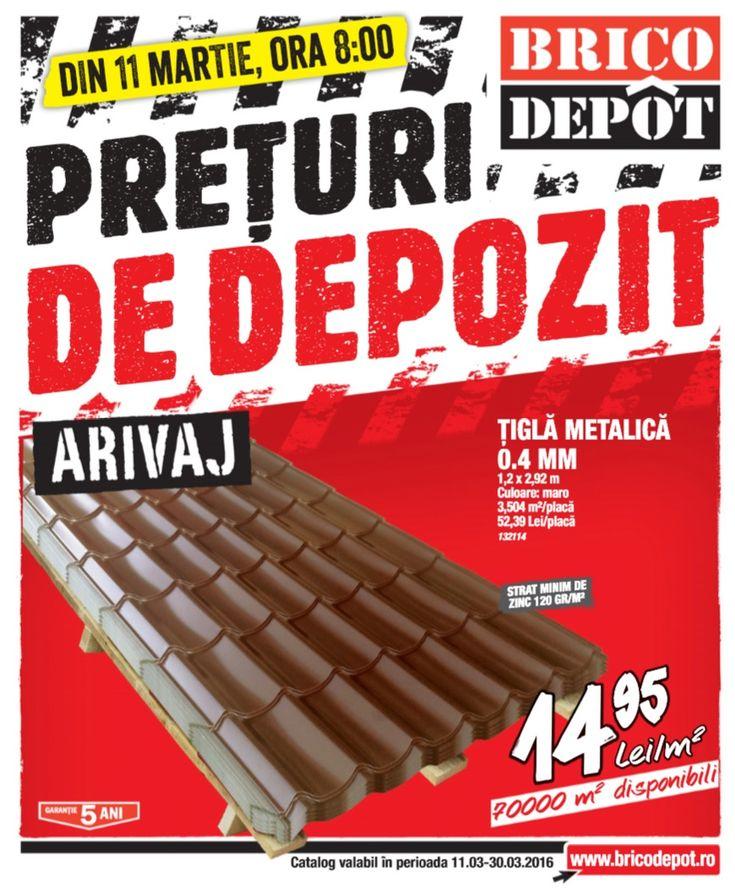 Catalog Brico Depot Preturi de Depozit 1130 Martie 2016