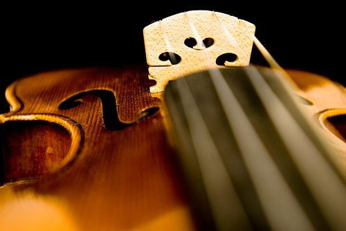 About Italian Violins | ... society with one of the most expensive violins ever sold at auction