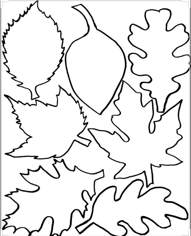 Pin by A~Z Schoolers on Fall/Autumn   Fall leaves coloring ...