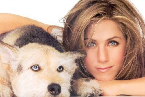 jennifer aniston tattoos | Jennifer Aniston Tattoo Tribute To Late Dog Norman