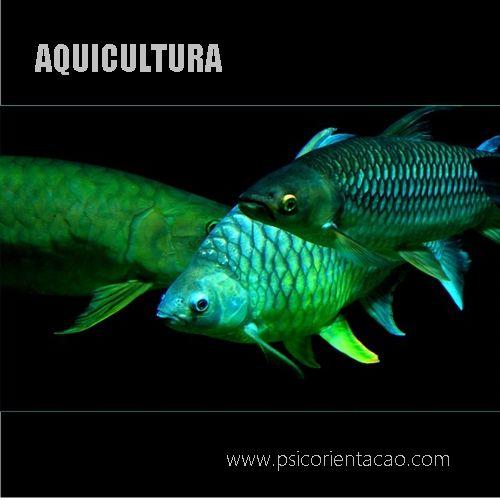 AQUICULTURA – Gerenciamento e acompanhamento da criação de animais aquáticos        Atuação: Criadores e meio natural
