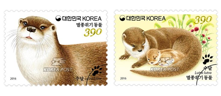COLLECTORZPEDIA Endangered Wildlife - Otter