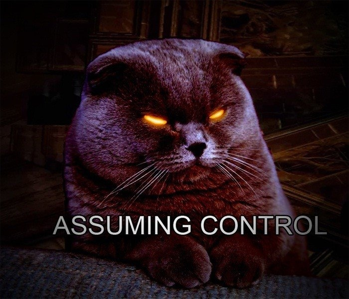 Ha, cat humor meets Mass Effect
