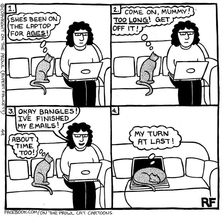 20 Best Dog Humor Images Dog Humor Dog