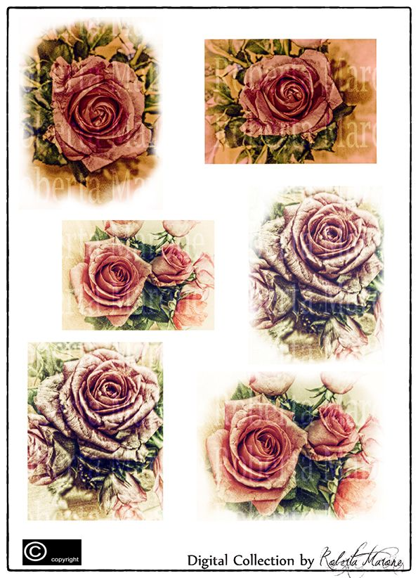 Digital vintage collection - Roses  High def découpage and papers to download and print  -www.decouparts.it