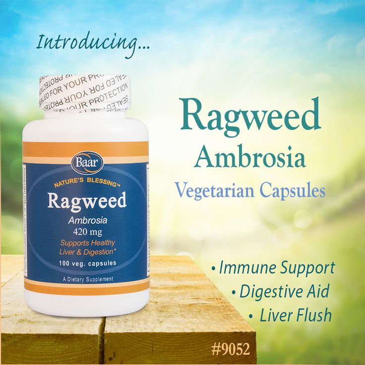 Don't miss out on our limited supply of Ragweed capsules, specially harvested from young Ragweed leaves! Great for allergy season or as a liver cleanse. #ragweed #supplements #edgarcayce #allergyrelief #allergies #limited #ImmuneSystem #digestivehealth #liverhealth