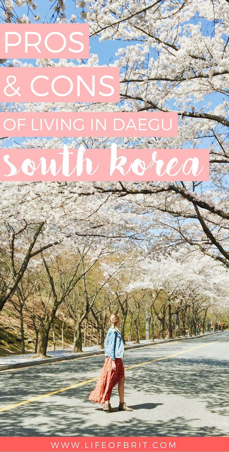 What's it like living in Daegu, South Korea? Check out my pros and cons at lifeofbrit.com!