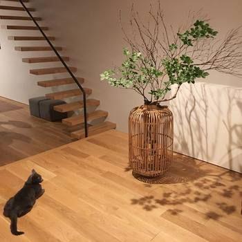 お部屋の広さがあるからこそ映える活け方。床と同色の竹の花器がなんともモダンで素敵です。