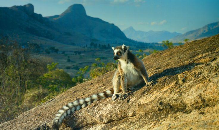Райский остров Мадагаскар