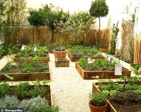 Cultiver des aromates dans une cour - Quelles plantes pour ma terrasse ? - CôtéMaison.fr