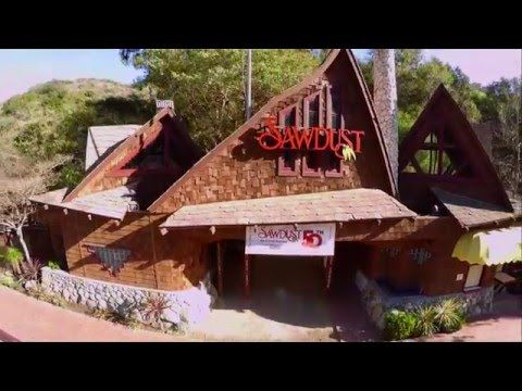 Sawdust Art Festival 50th Promotion - YouTube