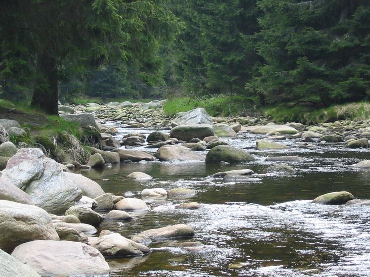 Vydra river, Šumava (Bohemian Forest)