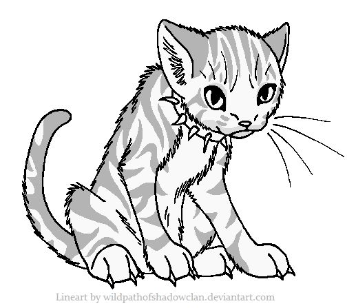 lineart for anyone to use for their original warriors characters or any cat characters in general - Warrior Cats Coloring Pages
