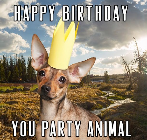 50 Best Funny Birthday Wishes For Men Make A Funny Bday