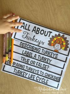 Turkey Flip Up Book to teach all about turkeys, a turkey life cycle, and turkey facts! Perfect for kindergarten, first grade, and second grade learners!