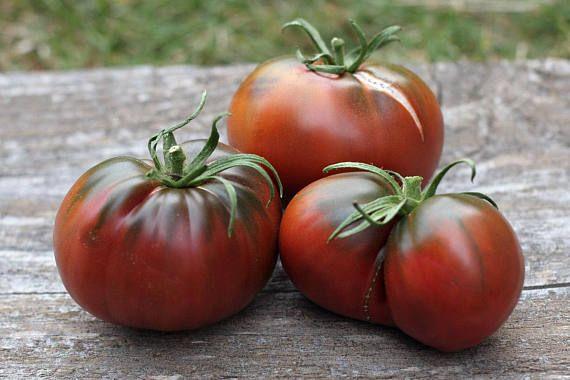 Amazon Chocolate Heirloom Tomato Seeds 30 Fresh Organic