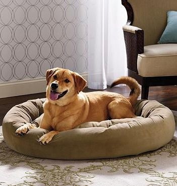 Our Ashton Pet Bed surrounds your dog in dream-inducing comfort.: Dogs Beds, Breeds Pet, Pet Products, Beds Surroundings, Pets, Ashton Pet, Pet Beds, Dreams Induce Comforter, Blankets