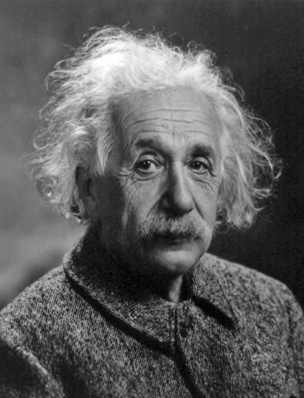 Einstein by Oren Jack Turner - proof that wild hair is a sign of personality